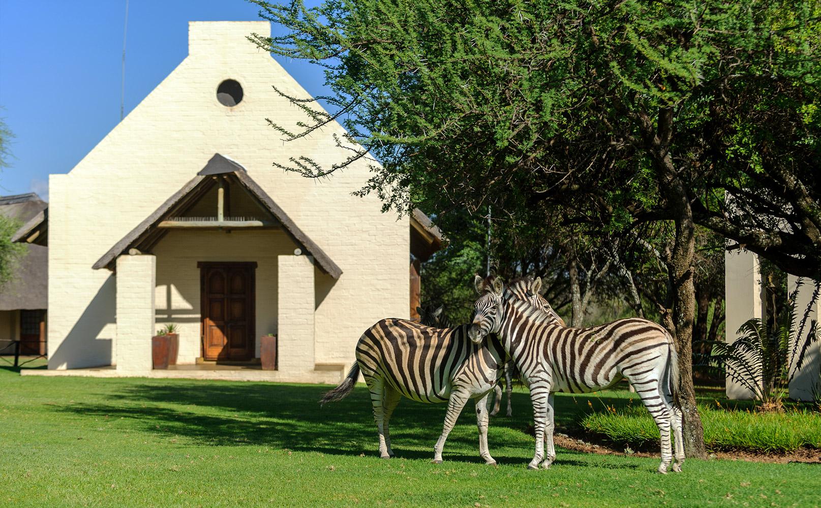 Bush Wedding Pretoria